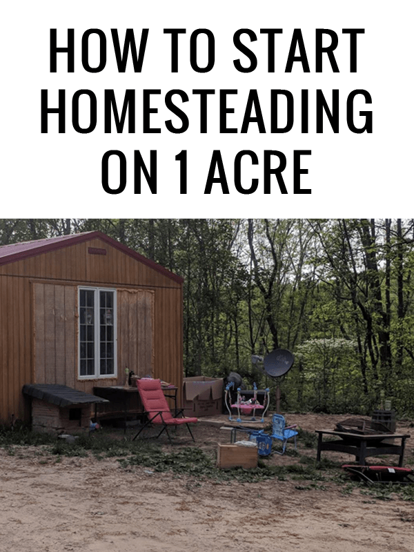 1 acre homesteading featured