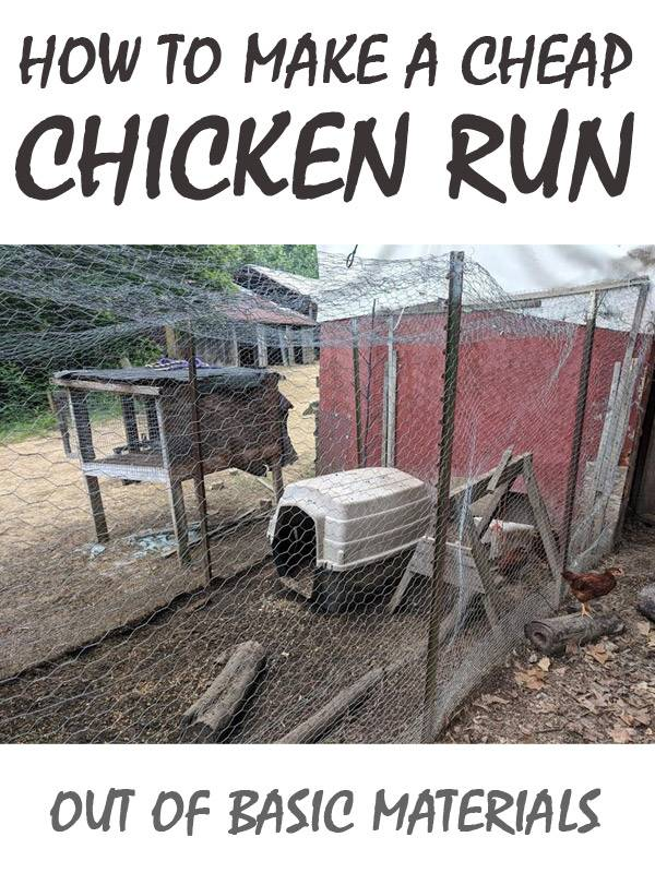 chicken run pinterest