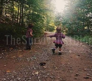 children in the woods featured