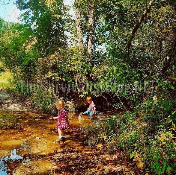 children playing in the creek