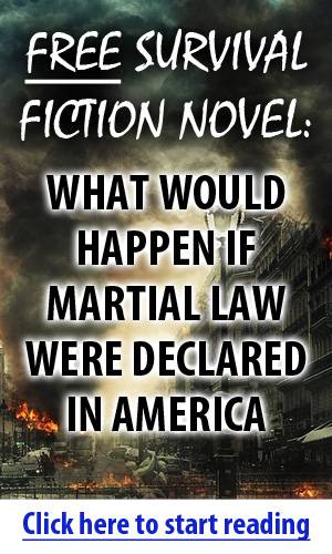 martial law survival fiction novel