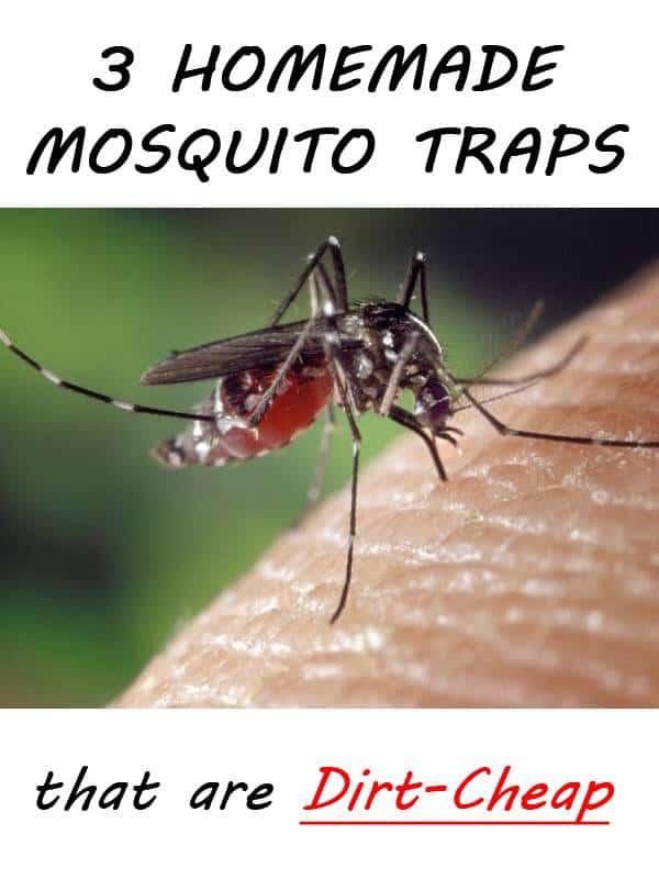 mosquito traps pinterest