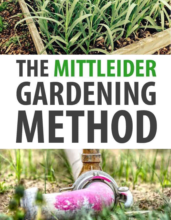 Mittleider Gardening pinterest