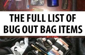 bug put bag items pinterest