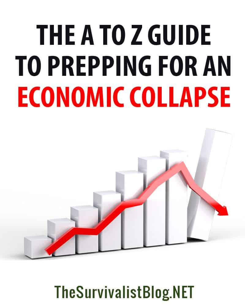 economic collapse prepping pin