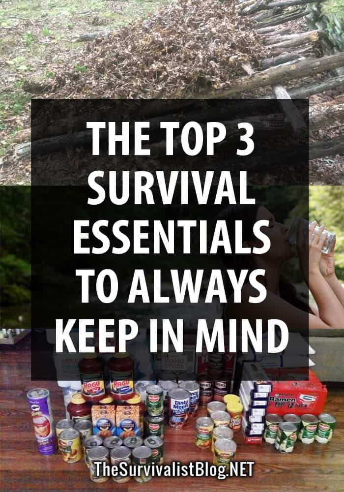 3 survival essentials pinterest