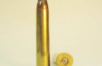 .45-70 Government cartridge
