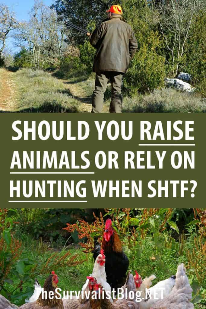 hunting vs raising livestock pinterest image
