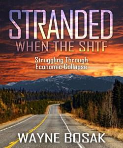 stranded by Wayne Bosak