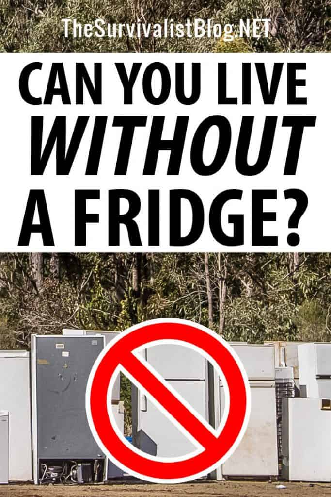 living without a fridge pin