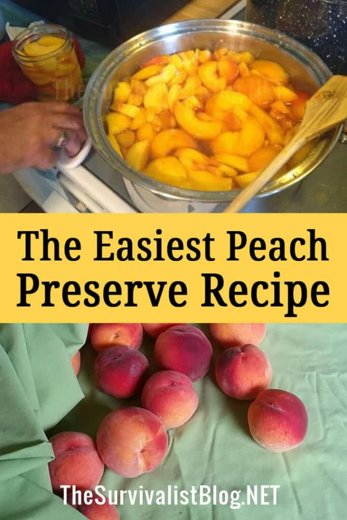 peach preserve recipe pin