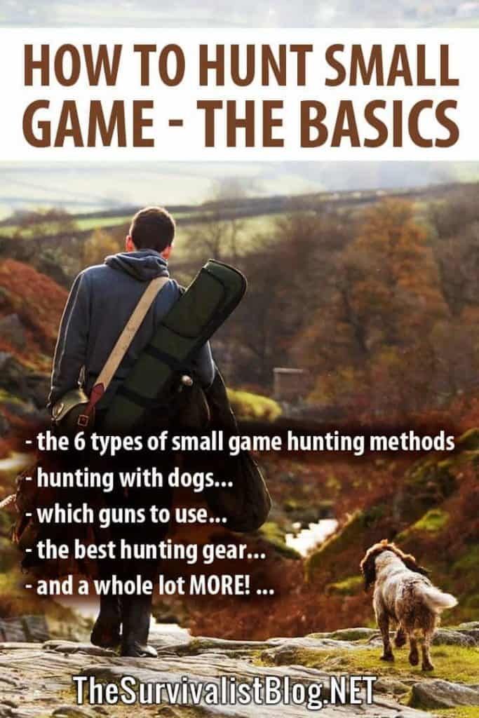 how to hunt small game Pinterest
