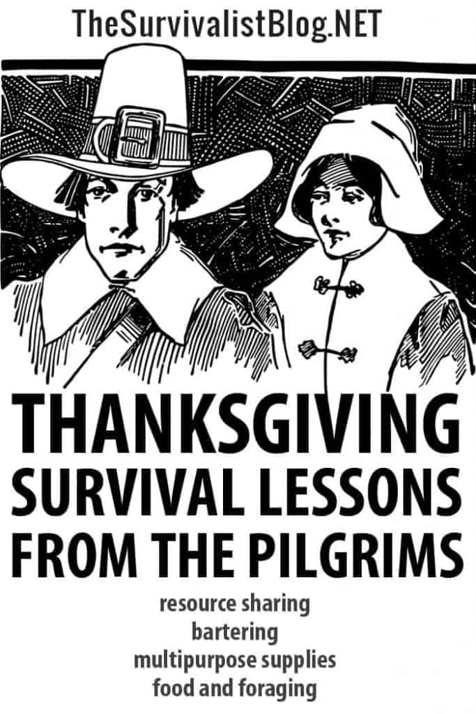 thanksgiving survival lessons Pinterest image