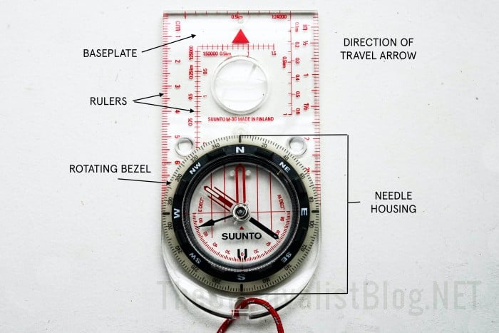 compass anatomy part 2