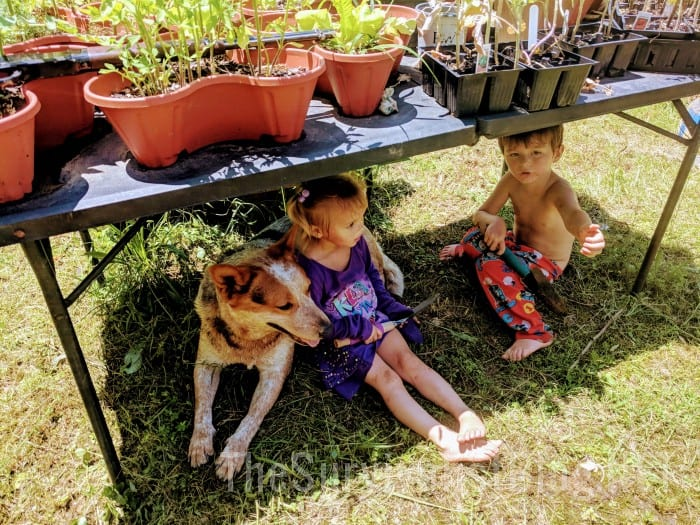 kids under a table with plants in pots on it