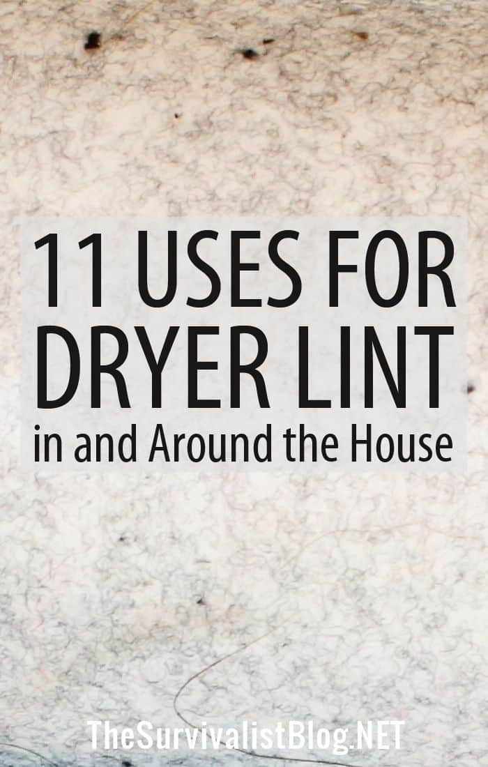 dryer lint uses Pinterest image