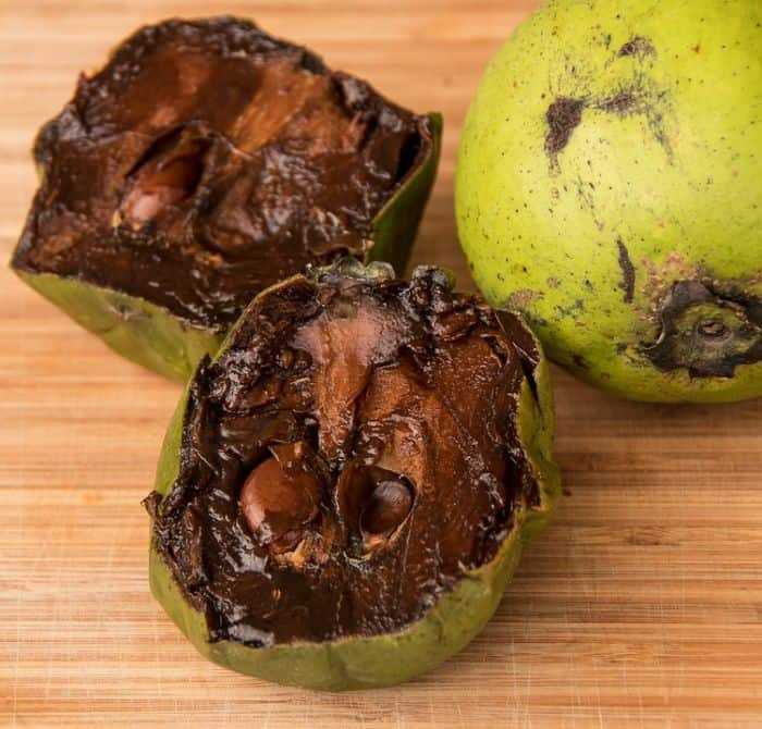 black-sapote-fruit