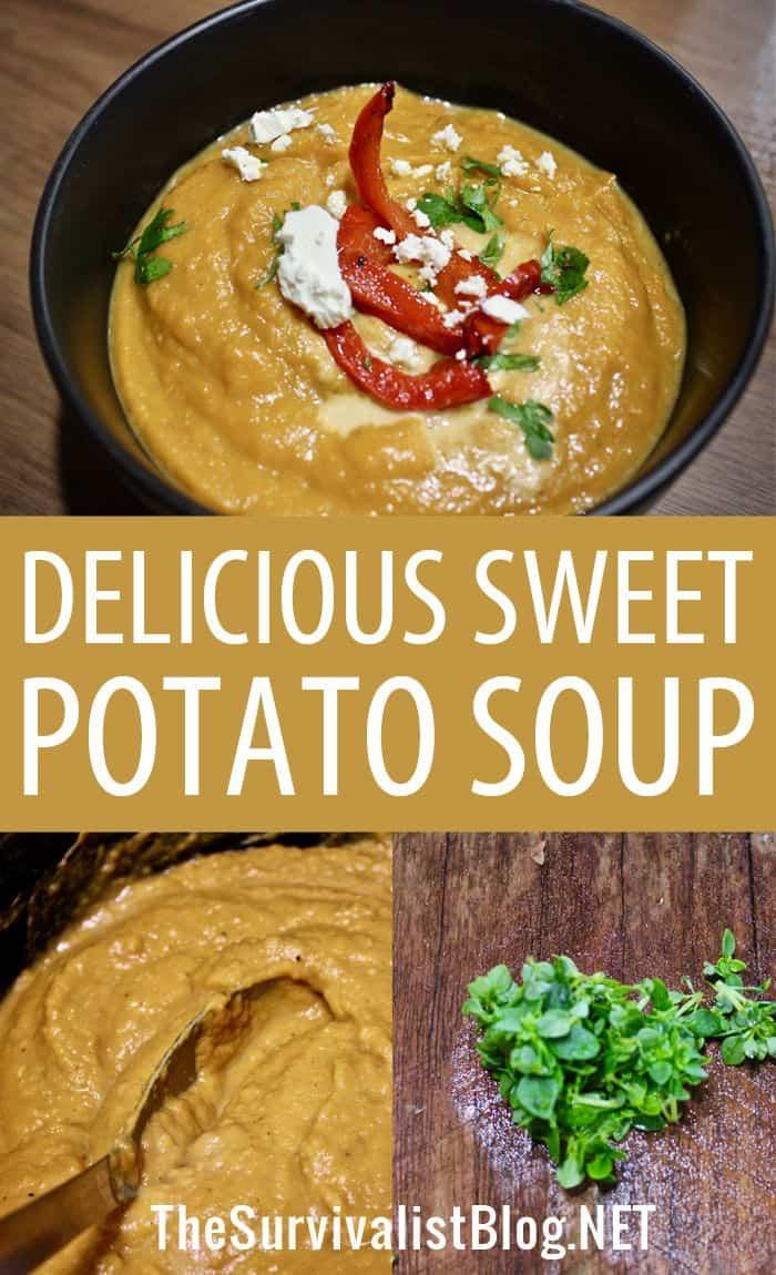 sweet potato soup pinterest image