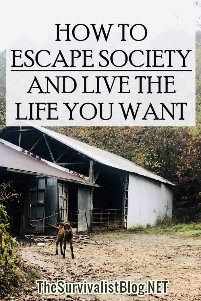 escape society Pinterest image
