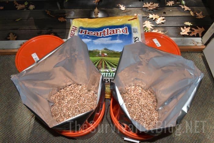 beans inside Mylar bags