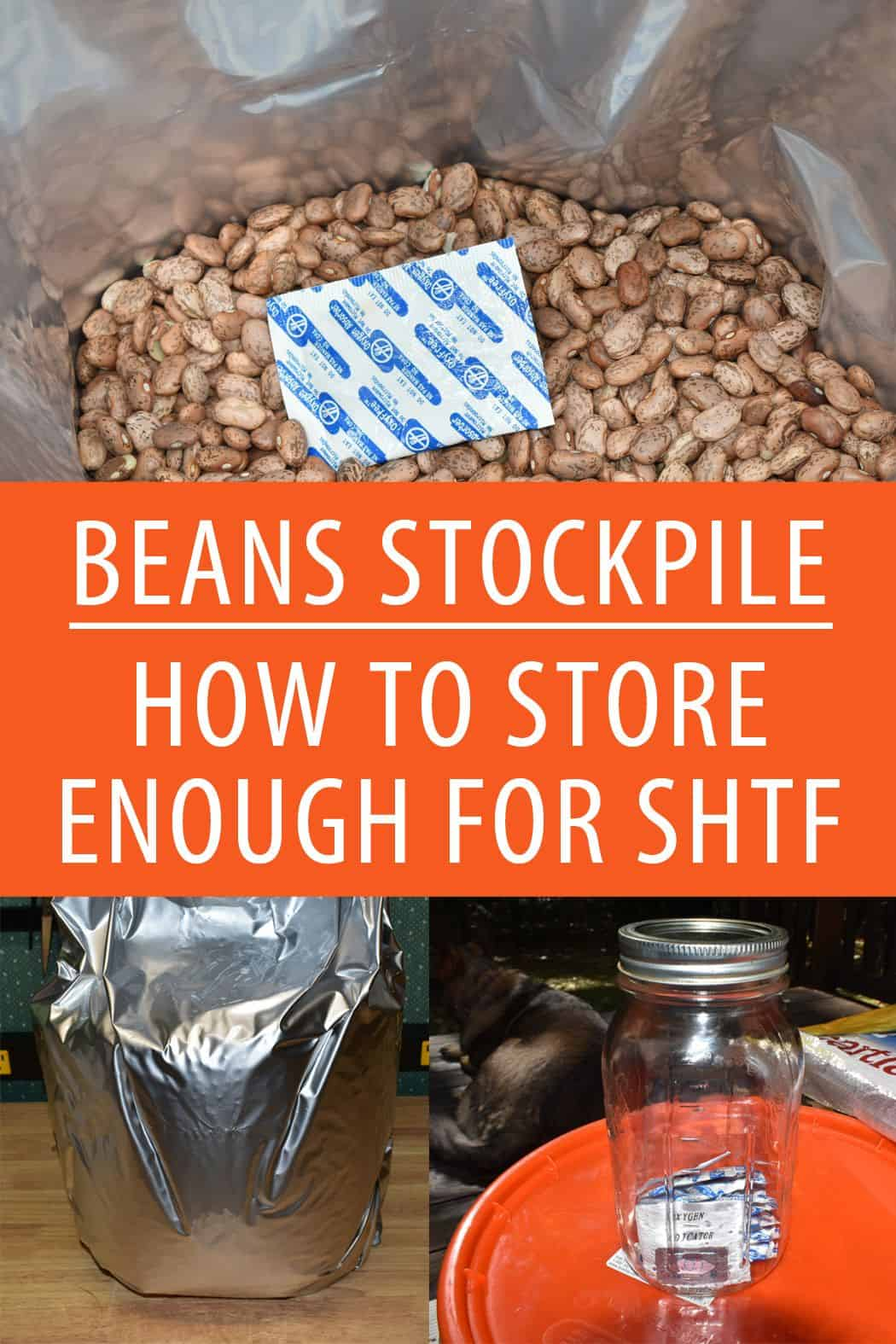beans stockpile pinterest